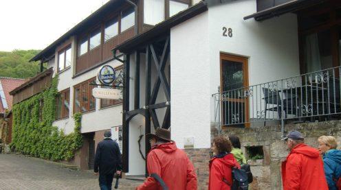 09.05.2019 - Baumwipfelpfad Steigerwald