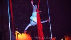 Issima Show - Acrobatica aerea-04