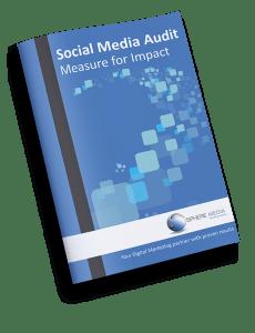 Social Media Audit-01(1)