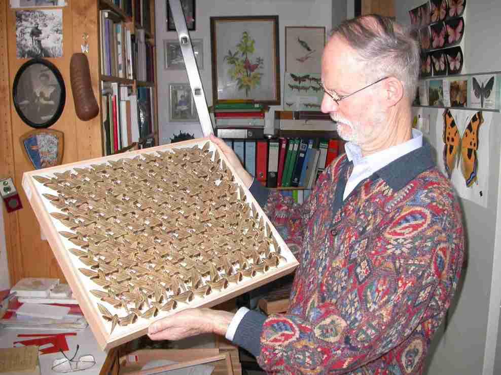 Photo site Entomologistes Sphingologues 6