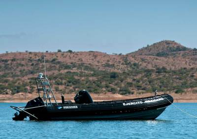 Piranha Spibo Rib 800 FB