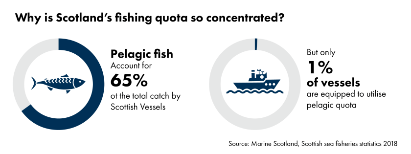 Charts showing why Scotland's fishing quota is so concentrated. Pelagic fish account for 65 percent of the total catch by Scottish vessels but only 1% of vessels are equipped to utilise this quota.