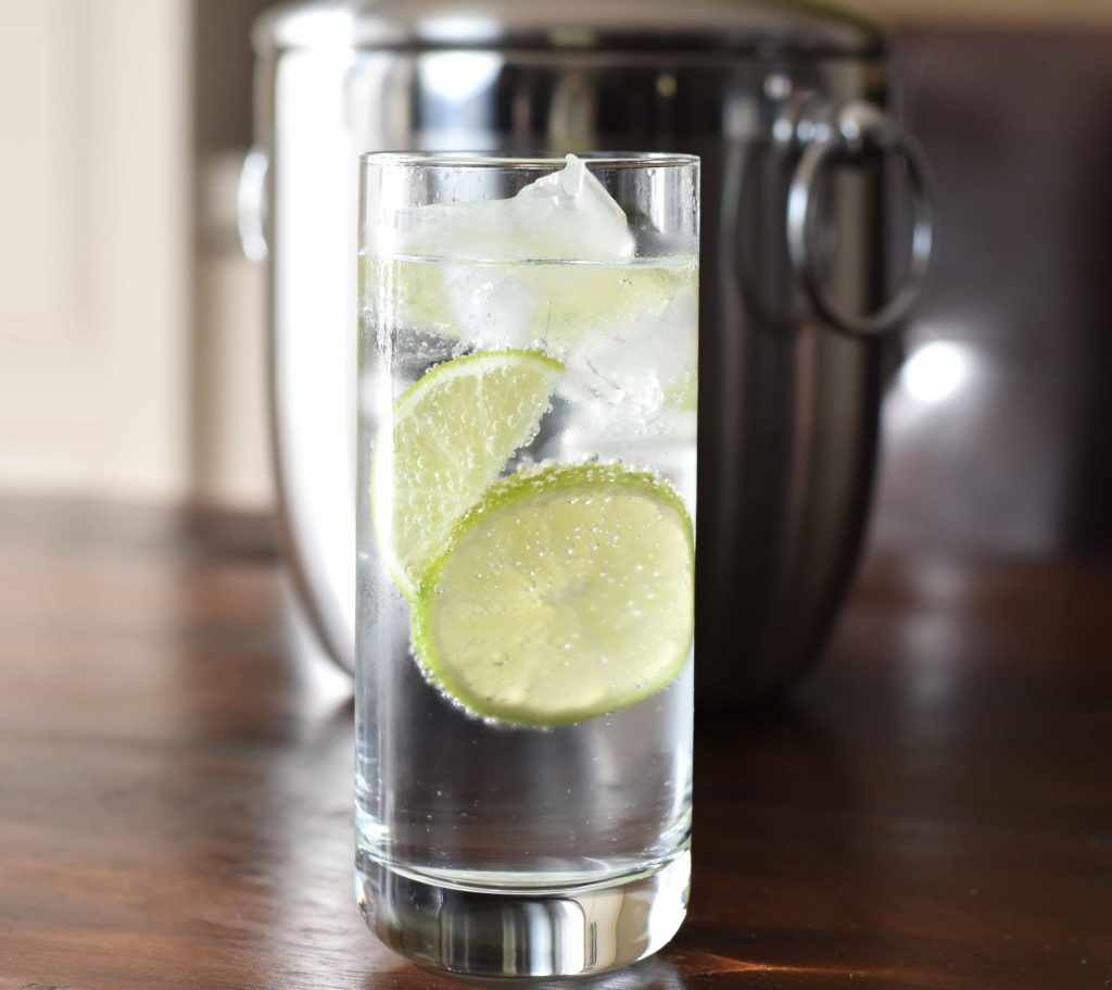 Low Carb, No-Guilt Gin Tonic Cocktail, Party Drinks
