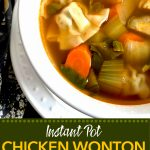 Chicken wontons in a clear broth with carrots and bok choy