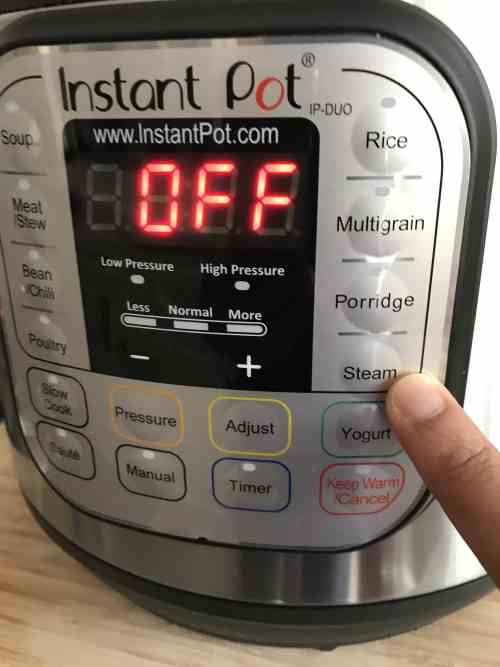 Instant Pot DUO Water test