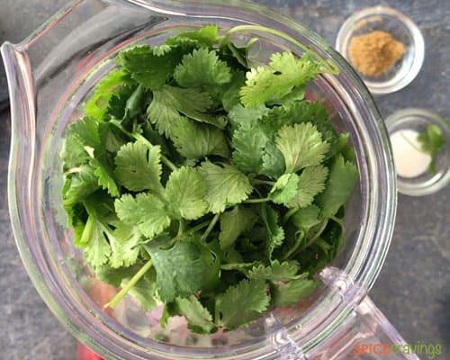 Adding cilantro to the blender to make salsa
