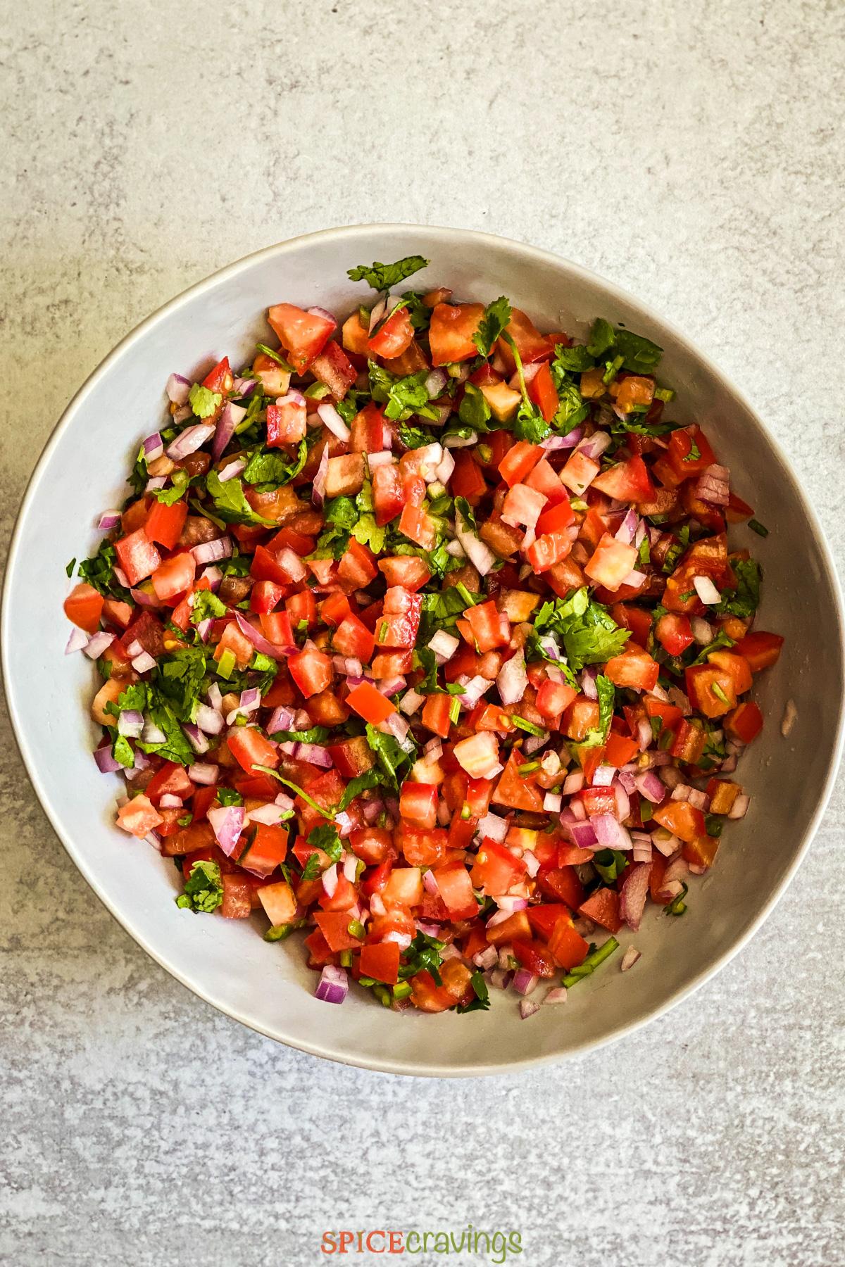 Bowl of salsa fresca (tomato salsa)