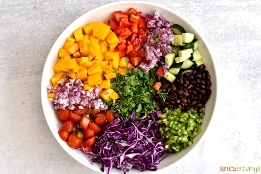 diced mango, red pepper, onion, cucumbers, jalapeno, red cabbage, tomatoes, cilantro, black beans in white bowl