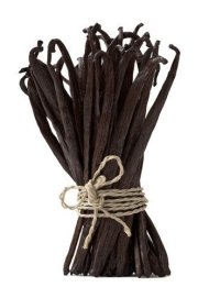 Grade A Premium Gourmet Madagascar Bourbon Vanilla Beans , Fresh Prime, Approximatelly 17 Centimeters (Pack of 10)