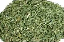 Rue ~ 1 Oz ~ Dried Herb ~ Ravenz Roost herbs ~ Wicca ~ Spells ~ Special Info on Label