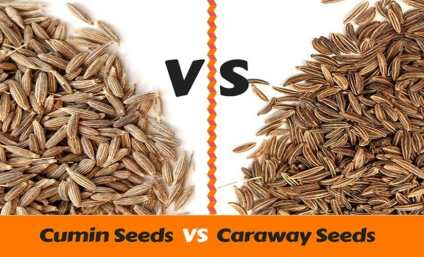 caraway seeds and cumin seeds difference