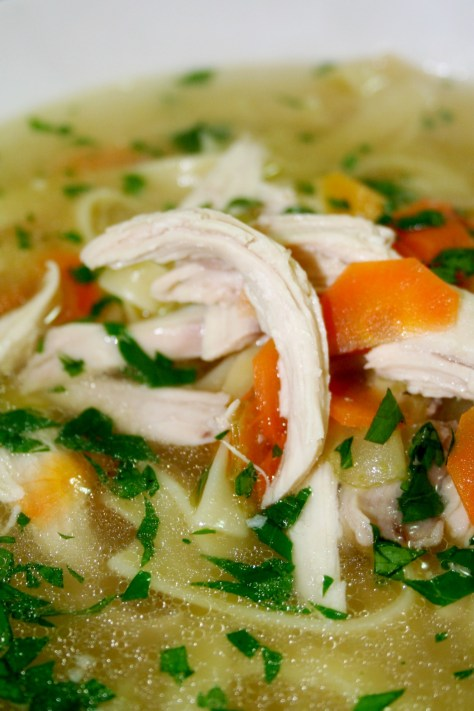 Chicken Noodle Soup © Spice or Die