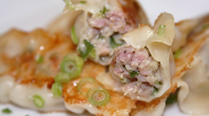 Chef Tim's Pan Fried Pork and Chive Potstickers