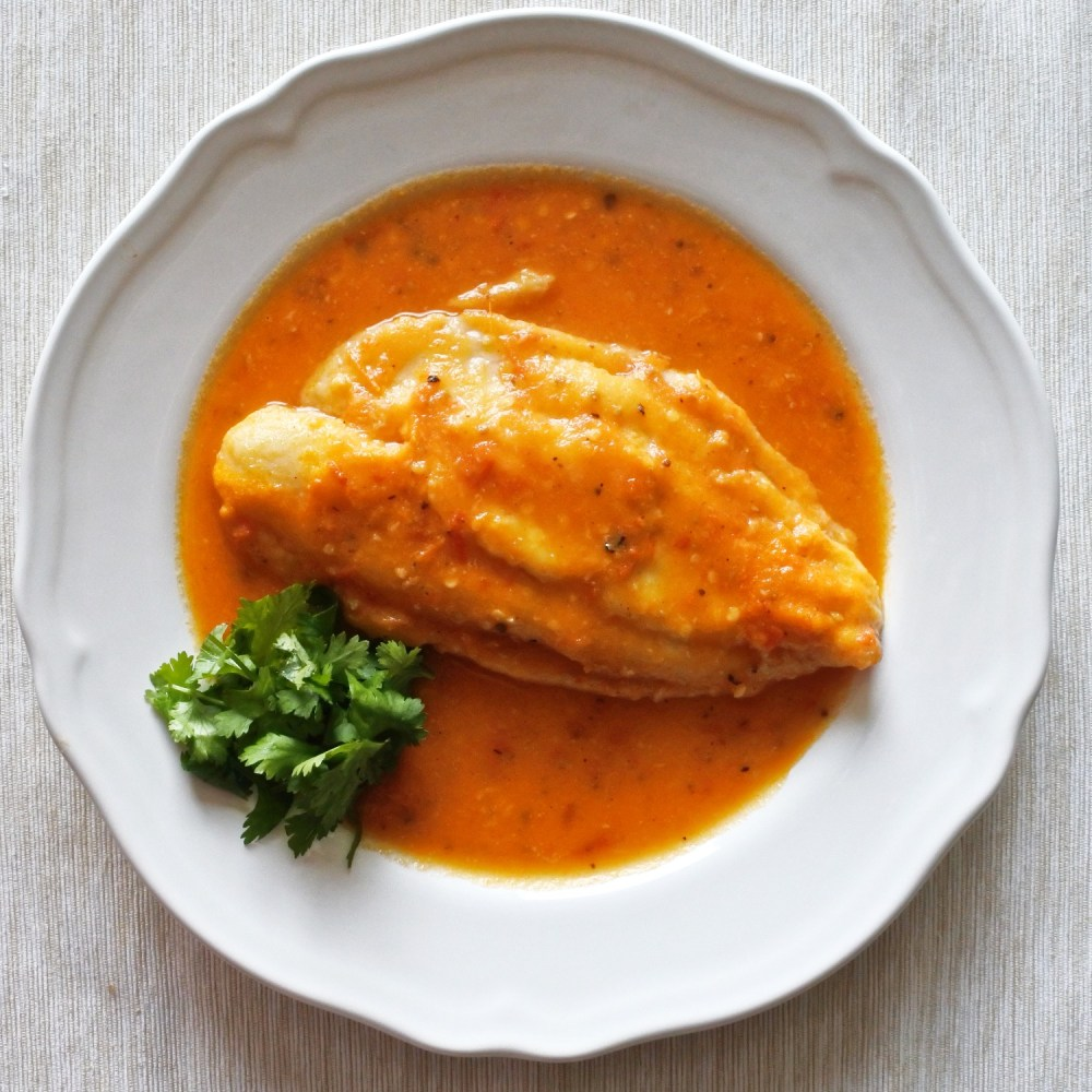 John Dory fish fillet poached in tomato chili broth on plate with fresh cilantro