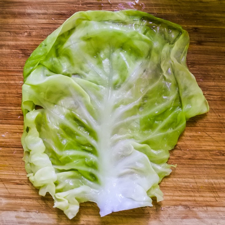 boiled cabbage leaf