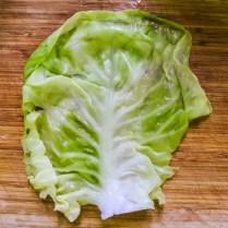 boiled cabbage leaf