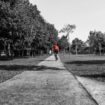 A shadowed picture of a cyclist in the park in red and grey