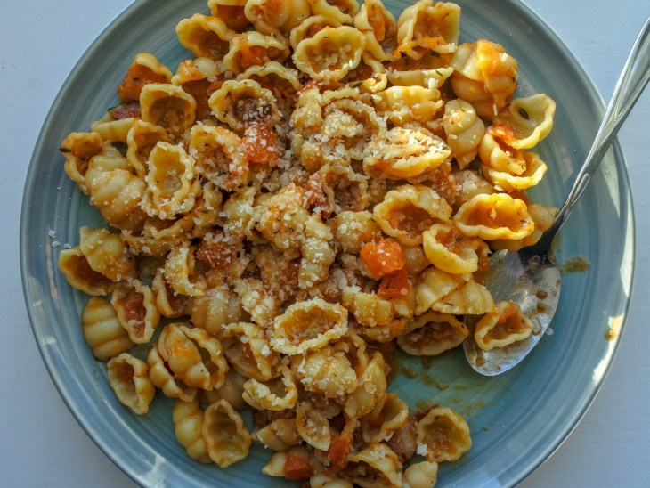 pasta shells tossed in a bacon and tomato sauce on a plate