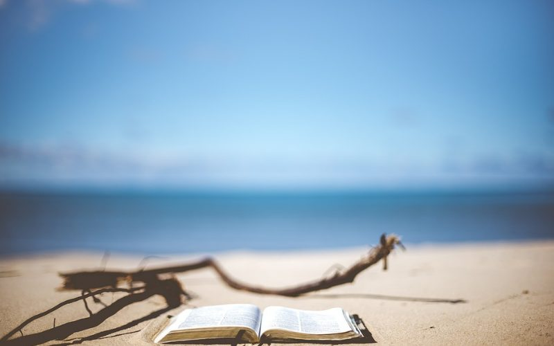BOOK REVIEW – My Horizontal Life