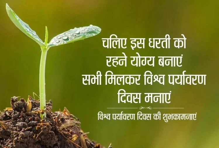 Happy World Environment Day 2020 Wishes, Images, Quotes, Messages ...