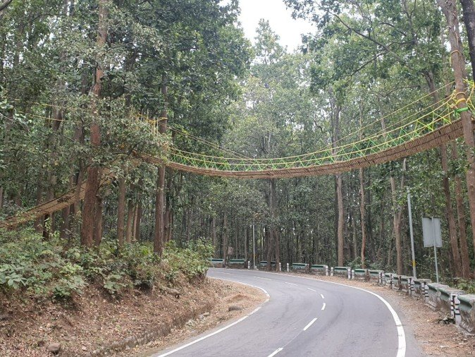 Nainital: 70 Meters Long Eco Bridge Designed To Save Reptiles From A Road Accident