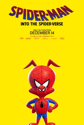 Spider-Man Into the Spider-Verse - Character Posters - 02