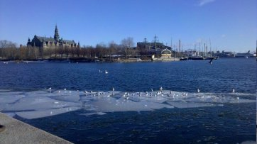 2011-03-16_14-54-15_294_Stockholm County