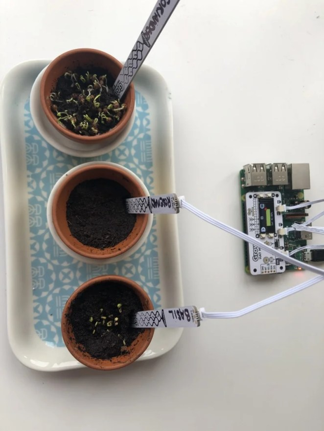 The moisture sensors have space to label each plant