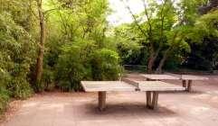 Tischtennis im Dschungel
