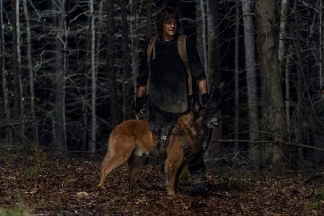 Daryl-And-Dog-Are-In-The-Woods-At-Night-On-The-Walking-Dead-Season-11