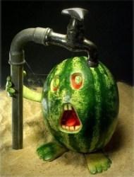 decorative-vegetable-carving-watermelon-face1