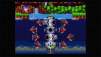 Denne Sonic 2-modifikasjonen er et helt nytt spill.