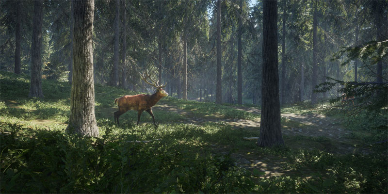 thehunter call of the wilds