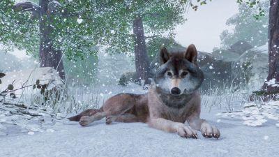 Et av de mange flotte dyrene vi kan ha i parkene våre.