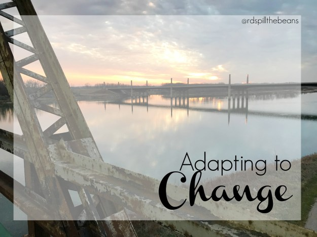 Adapting to Change Cover