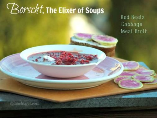Borscht, the Elixer of Soups by Angela Roberts