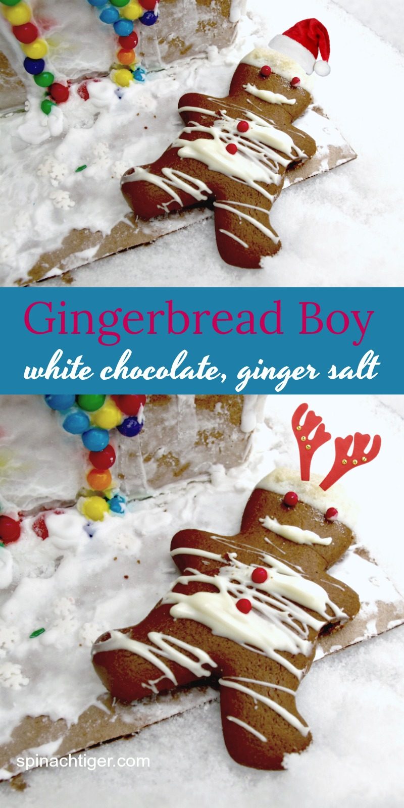 Gingerbread Boy with Ginger Salt