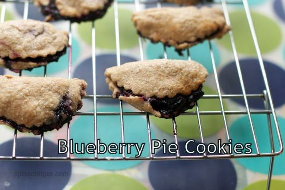 Blueberry Hand PIes from Spinach Tiger