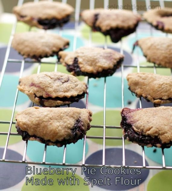 Blueberry Hand Pies by Spinach Tiger