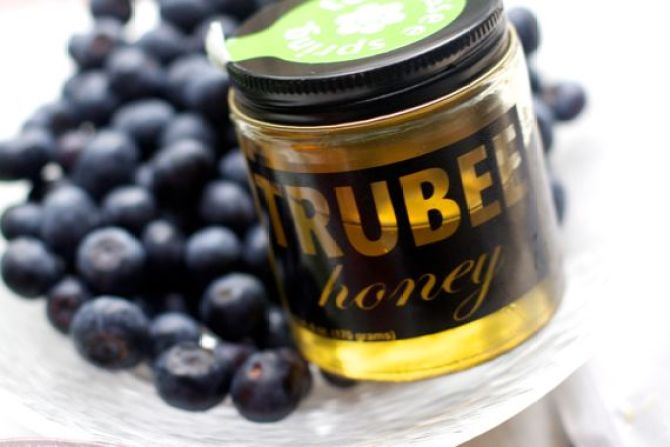 Blueberry Thyme Biscuits with Truebee Blueberry Honey by Angela Roberts