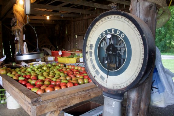 Burns Farm Produce Stand Open for the Summer 15  by Angela Roberts