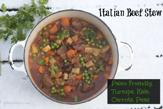 Italian Beef Stew, Paleo Friendly by angela roberts