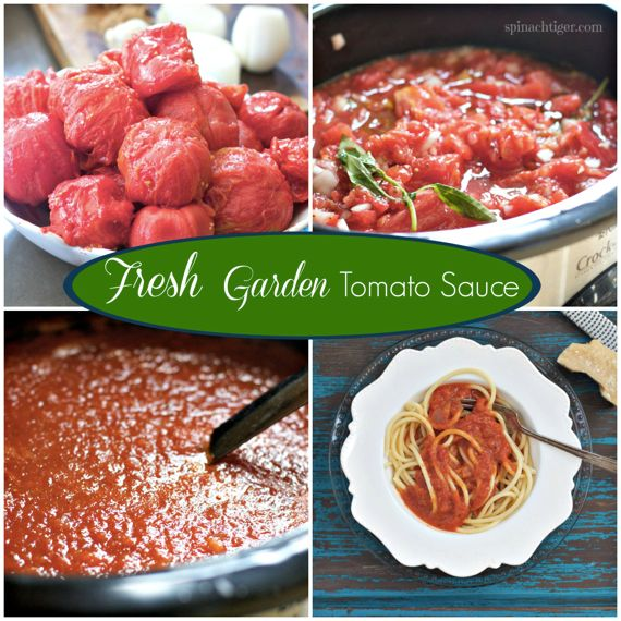 Fresh Garden Tomato Sauce Recipe by Angela Roberts