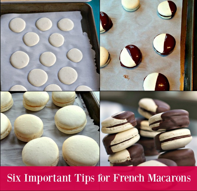 Macarons from Spinach Tiger
