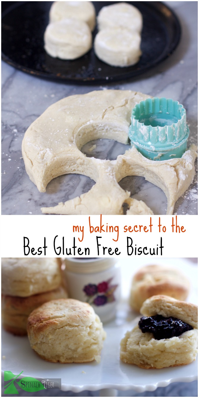 Gluten Free Biscuits: Easy Healthy Recipes from Spinach Tiger