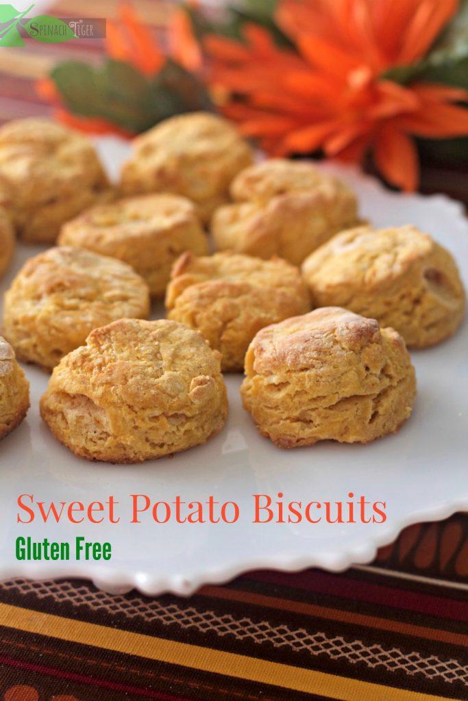 lead-sweet-potato-biscuit-gluten-free