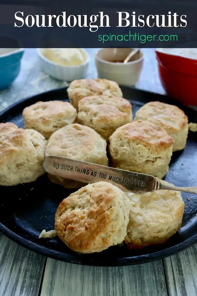 Easy Sourdough Biscuits from Spinach Tiger #sourdoughbiscuits #biscuits #southernbiscuits #sourdough
