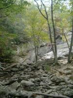 creek and falls at Cunningham