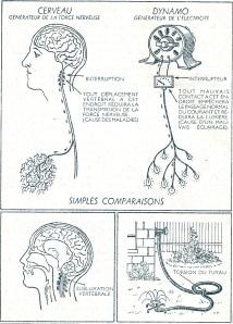comparaisons-odru-spindynamic