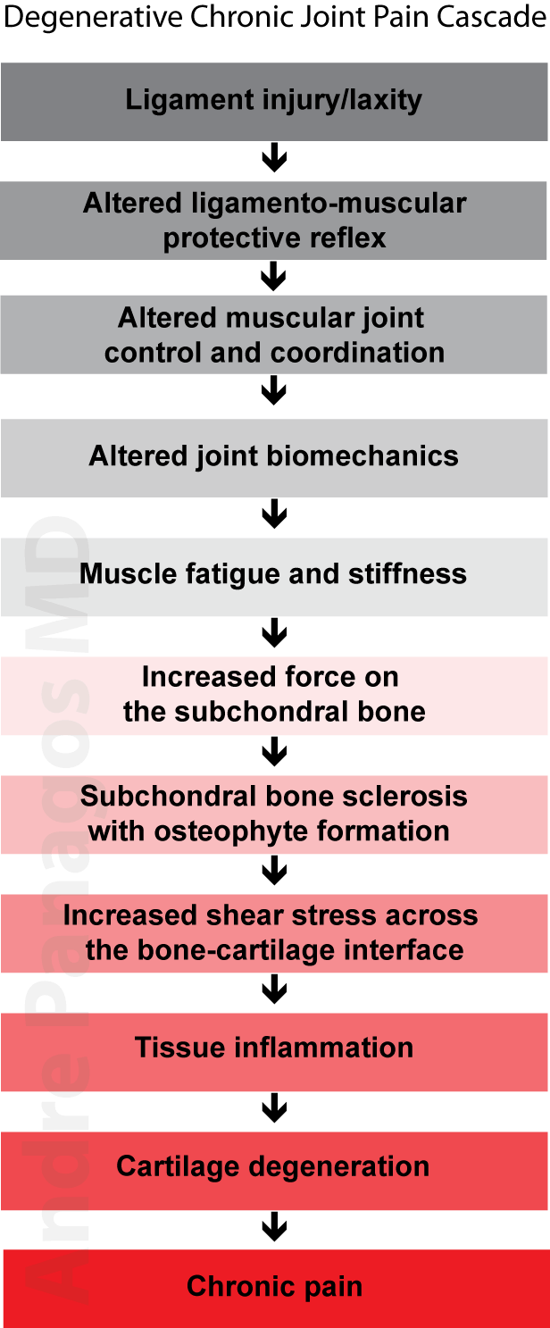 Chronic joint pain hypothesis